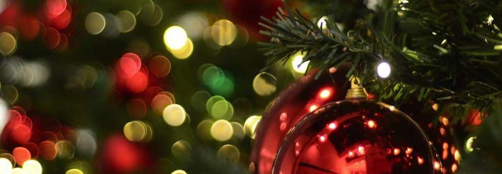 Christmas lights and tree