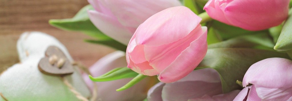Pink tulips and heart